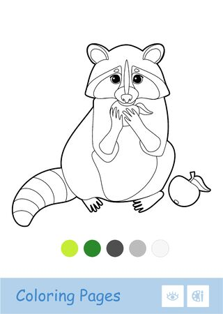 Colorless vector contour image of a raccoon eating an apple isolated on white background and palette below. Wild animals preschool kids coloring book illustrations and developmental activity.