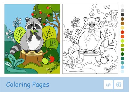 Colorful template and colorless contour image of a raccoon eating an apple in a wood. Wild animals preschool kids coloring book vector illustrations and developmental activity.