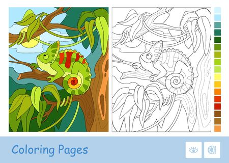 Colorful example of chameleon sitting on the branch in a rainforest and colorless vector contour image on white background. Animals-related preschool kids coloring books and developmental activity. 向量圖像