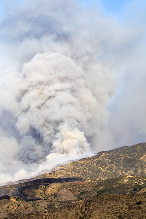 Smoke rising from a wildfire Stock Photo