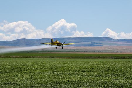 Crop Duster Airplane spraying field