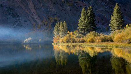 Early morning at Intake lake during fall colors. Trees are a colorful yellow and gold. Bishop California Imagens