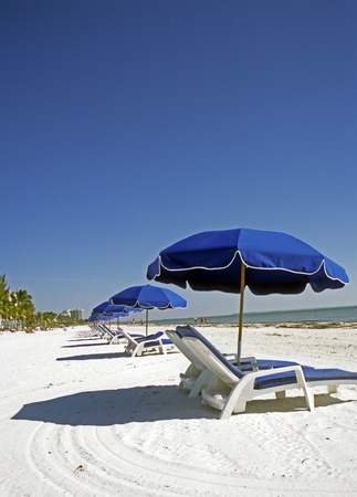 Beautiful sunshine day at Fort Meyers, Florida, beach.  Long row of lounge chairs and blue umbrellas with white sand and the Gulf of Mexico in the background. Vertical with dead space for writing. photo