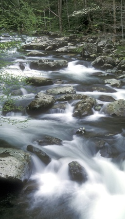 Energy flows through this river stream as it cascades over the rocks in the Smokey Mountains of Tennessee.