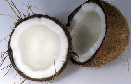 Coconut cut in half exposing crossection of flesh. photo