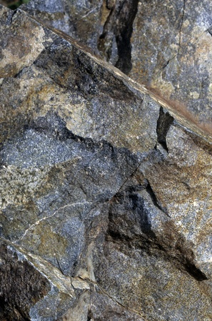 fe: Close-up of rocks in Santa Fe National Forest, New Mexico. Possible background for a website template.