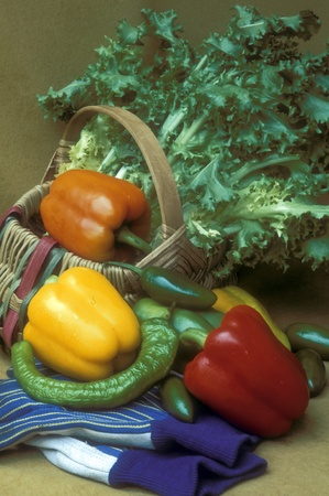 Still llife of bell peppers and hot peppers around a wicker basket filled with chickory. Film scan.