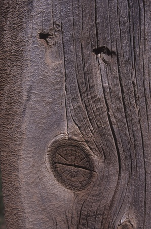 Close-up of wood used in a fence. Weathered and textured. Ideal for website template background.