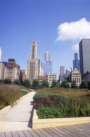 Lurie Park in downtown Chicago with skyline in background.