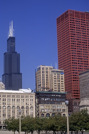 willis: Chicago skyline with Willis Tower, Illinois, USA.