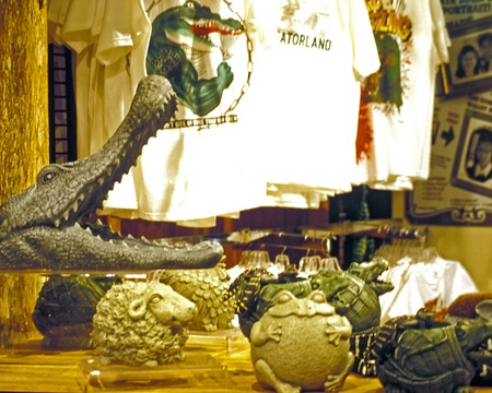 Alligator head, t-shirts, and other souvenirs for sale at Gatorland gift shop, Orlando, Florida.