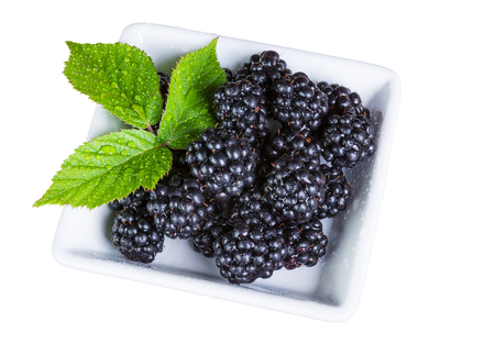 Ripe blackberries with drops of water. Decorative fruit with green bramble leaves isolated on white background.