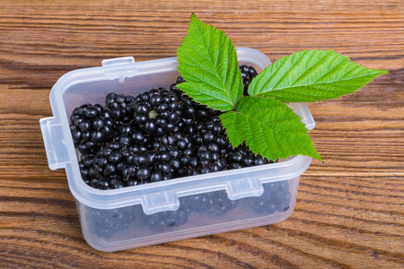 Sweet juicy blackberries in plastic container. Tasty fruity refreshment with decorative green leaves on garden table.