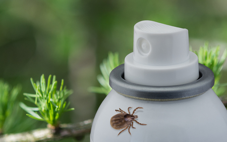 Tick and spray on blurred green background. Detail of the dangerous parasite. Concept for repellent, disinfection, treatment.