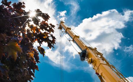 Braccio della gru durante il lavoro ad altezze su costruzione. Colpo romantico dal basso con albero, cielo, nuvole e raggi del sole.