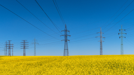 Power line in rape field. Brassica napus. Electrical and renewable energy. Beautiful flowering canola, electricity pylons and spring azure blue sky in background. Industry, agriculture, environment.