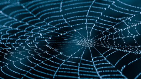 Wet spiderweb with beads of dew droplets close-up. Beautiful harmonic texture from the spider web with water drops on a dark night background with a mysterious blue glow.