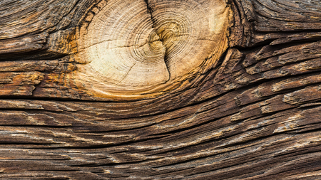 Abstract wooden texture of a old plank. Beautiful artistic close-up of vintage board with rough cracked surface. Decorative brown background. Weathered wood material with a round detail of beige knot. Stok Fotoğraf
