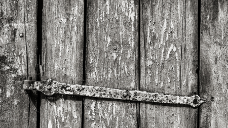 Old rustic wicket in black and white detail. Striped wooden texture. Artistic close-up of vintage wood door with rusty metal hinge. Abstract background of weathered flaked planks with uneven slits.