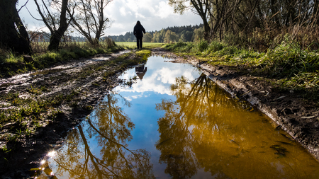 Human figure on off-road track. Tree mirroring in water close-up. Man silhouette. Muddy bumpy field path in spring landscape. Forest in background. Reflection of a blue sky and white clouds in puddle. Stock Photo