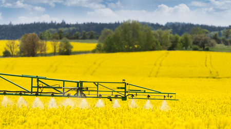 Agricultural sprayer detail. Flowering rapeseed field. Brassica napus. Working spraying machine in yellow canola land. Spring landscape. Chemical fertilizers, toxic pesticides, insecticides. Ecology.