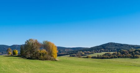 Sunlit autumn trees on a mountain pasture. Scenic panorama under clear blue sky. Green grass on natural meadow in rural landscape with view on wooded hills. Panoramic scenery of South Bohemia, Europe.