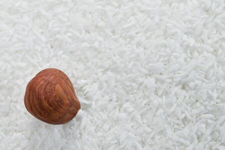 Hazelnut kernel on white coconut texture. Staple food. One brown peeled hazel nut on dry grated coco detail. Culinary background for healthy baking, cooking, vegetarian or vegan diet. Selective focus.