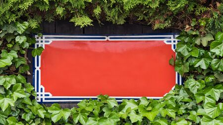 Red rectangular metal sign board bordered by leaves of common ivy and thuja. Hedera helix. Ornate blank metallic nameplate in lush green foliage of evergreen plants and cedar hedge on wood background.