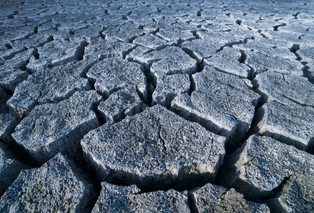 Abstract gray arid cracked ground. Drought in soil texture detail. Dry parched wasteland in perspective view. Eco background of empty dead scorched earth. Climate change, natural or nuclear disaster.