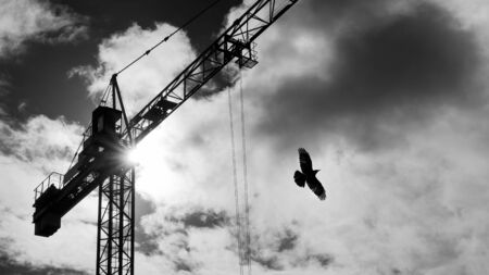 Tower crane and flying bird silhouette on sky with sun beams shining in clouds. Black and white lifting device with rolling trolley on jib and rook with spread wings on dramatic cloudscape background.
