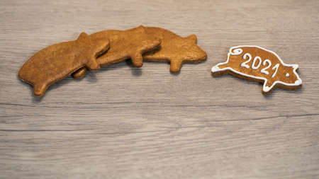 New Year 2021 on baked gold piggy for happiness from Xmas pastry. Line of cute gingerbreads in pig shape with a happy winner decorated by white frosting. Traditional ornate sweets on wood background.