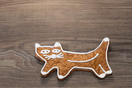 Cute golden baked cat from gingerbread cookie on wood background. Beautiful Xmas decoration of traditional pastry painted by white frosting. Sweet edible child toy for Children's day or birthday.