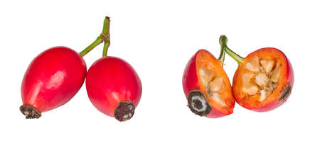Healthy rosehips with red pulp and seeds in core isolated on white background. Rosa canina. Close-up of one halved and two whole ripe rose hips fruits of briar on green stalk. Natural herbal medicine. 免版税图像