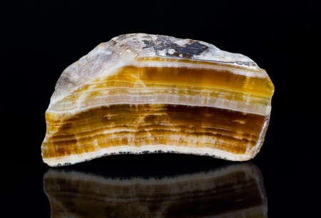 Cut polished aragonite gemstone with reflection on black background. Close-up of beautiful yellow, brown and white striped cross-section of mineral from Hridelec near Nova Paka in Czechia. Mineralogy.