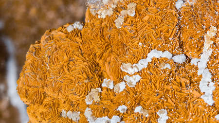 Beautiful texture detail of aragonite in orange and white color with clusters of crystals. Closeup of mineral from calcium carbonate. Collectable piece from Hridelec near Nova Paka, northeast Bohemia.