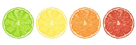 Set of slices lime,lemon,orange and grape fruit isolated on white background illustration vector eps10