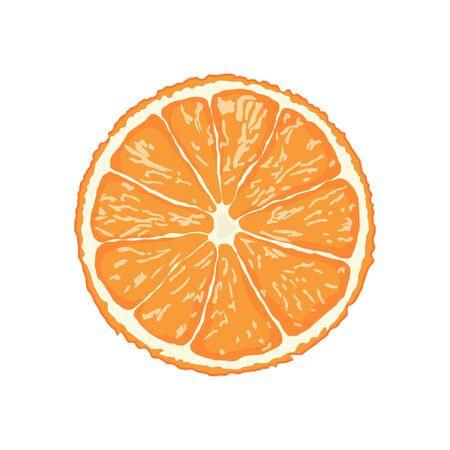 orange slice isolated on white background illustration vector eps10