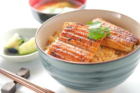 Unagi donburi. Japanese food. Broiled eel and rice.