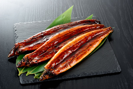 Roasted eel with sause. Kabayaki.Japanese food.