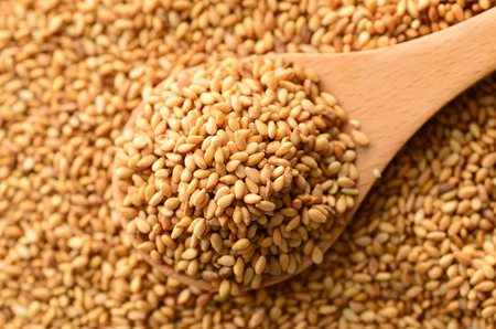 Toasted sesame seeds. Stock Photo