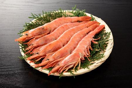 Argentine red shrimp Zdjęcie Seryjne