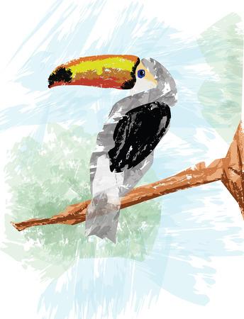 hornbill: Hornbill Vector.eps