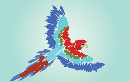 Macaw Parrot Spread Wings Vector