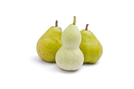 Use trigonella to represent women's curvy shape and pear to represent pear shaped body Stock Photo - 11989841