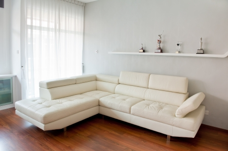 Modern living room with white sofa, wooden floor and golf trophy on the rack. Photo taken with fisheye lens photo