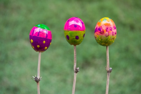 Easter eggs painted and being dried Stock Photo