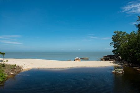 Meromictic lake of Penang National park, Penang, Malaysia
