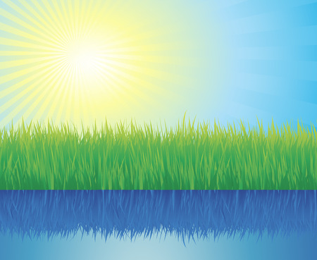 grass area: Beautiful summer background with grass and water