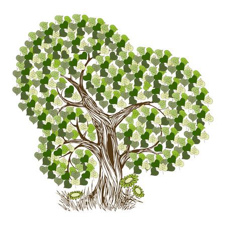 Tree with green leafage Stock Vector - 9123467