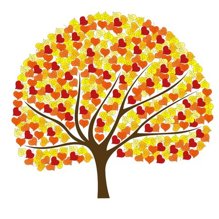 rowan: Beautiful autumn tree for your design